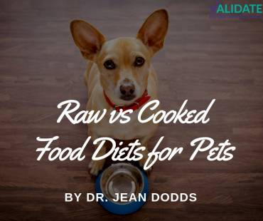 Raw versus Cooked Food Diets for Pets