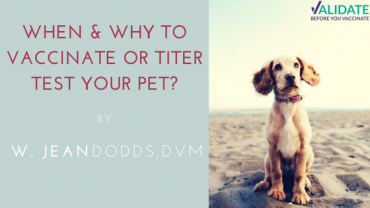 When & Why to Vaccinate or Titer Test Your Pet?