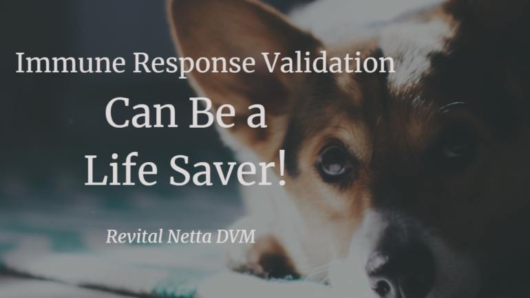 Immune Response Validation Can Be a Life Saver!