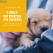 Understanding the Integrative (Holistic) Approach to Pet Care