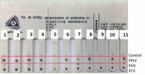 ImmunoComb test results