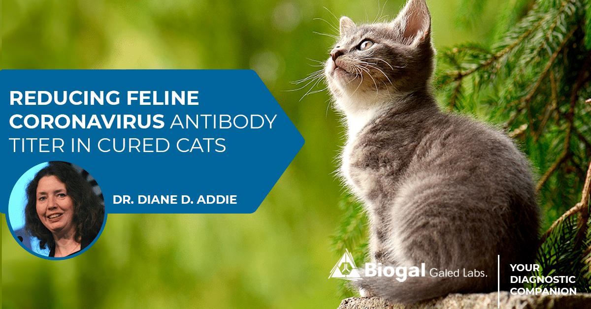 reducing feline coronavirus