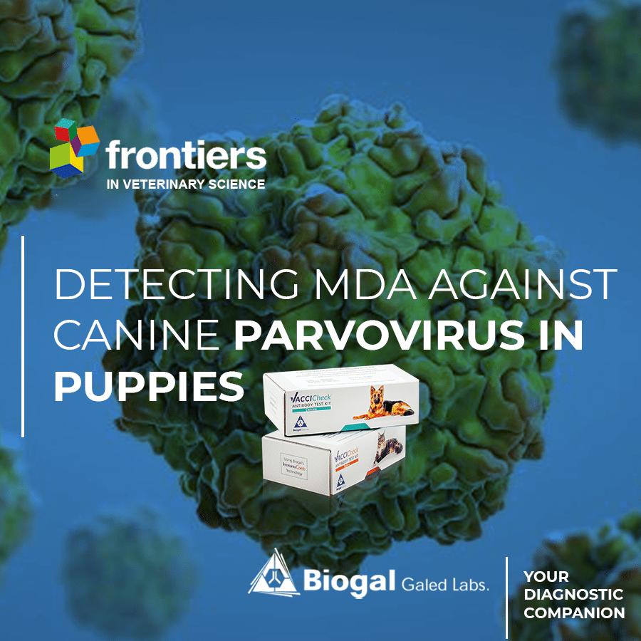 Detecting MDA Against Canine Parvovirus in Puppies TEMPLETE