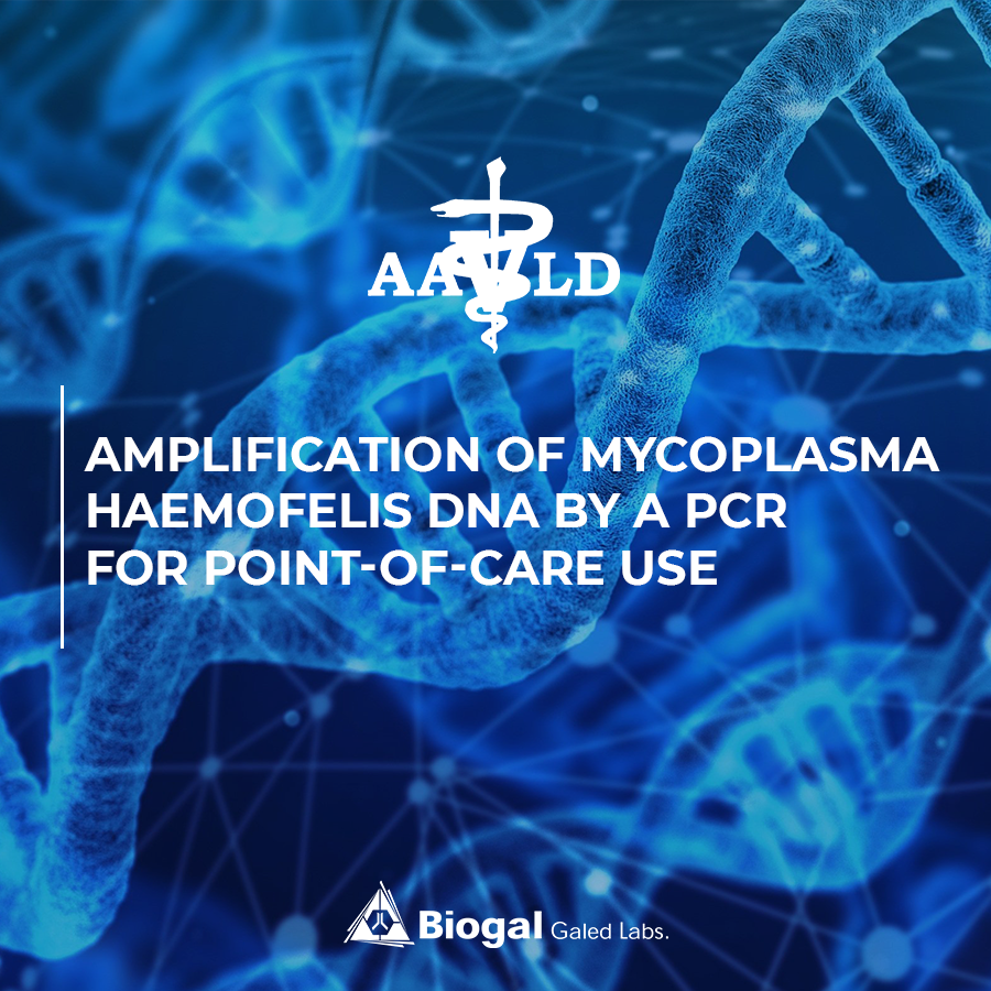 Amplification of Mycoplasma