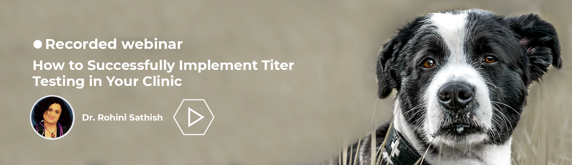 How to Successfully Implement Titer Testing in Your Clinic - recorded webinar