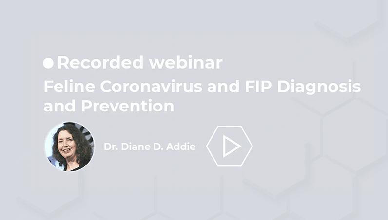 recorded webinars corona virus